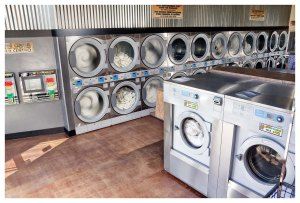 Electrolux Professional H model washers and 50x50 Electrolux stack dryers in Lucy's Laundry.
